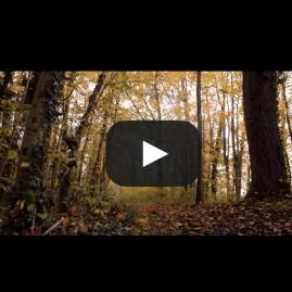 Vidéo de travelling